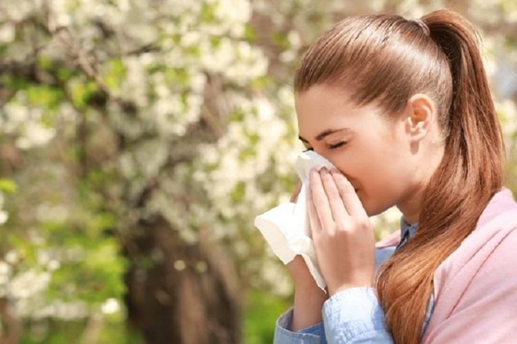 Excellent methods to prevent allergens